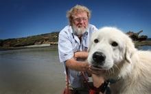 Cô chó nổi tiếng góp phần bảo vệ hòn đảo chim cánh cụt qua đời ở tuổi 105