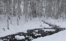 Dòng suối lạ ở Trung Quốc: Nhiệt độ hạ xuống -43,5 độ C, nước vẫn không bị đóng băng
