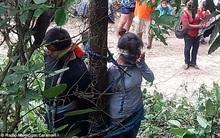 Bị nghi đánh cắp xe ô tô, người phụ nữ bị trói vào cây có đầy kiến độc, bị kiến cắn chết
