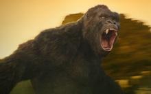"""Bom tấn """"Kong: Skull Island"""" phá vỡ kỷ lục phòng vé Việt Nam với 18,2 tỷ đồng sau 1 ngày ra mắt"""