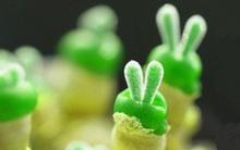 Cây cảnh hình thỏ con giơ chân chữ V khiến dân tình bấn loạn vì độ dễ thương siêu cấp