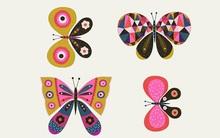 Chọn 1 con bướm để khám phá vẻ đẹp tiềm ẩn trong con người bạn