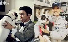 Chó cưng của Siwon được cho là gây nên vụ cắn CEO tử vong: Từng có tiền sử cắn người