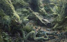 Bạn nhìn thấy con vật nào trong khu rừng, điều đó sẽ tiết lộ điểm mạnh của bạn