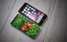 3 chiếc iPhone của năm 2017 sẽ được trang bị 2 tính năng tuyệt vời mà iFan thèm khát từ lâu