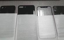 Mặt lưng của 3 chiếc iPhone mới vừa bị lộ cho thấy nó sẽ có một tính năng cực hot