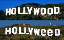 Tác giả đổi Hollywood thành Hollyweed đến đồn cảnh sát tự thú