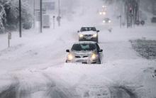 Mỹ và châu Âu đối mặt bão tuyết và nhiệt độ thấp bất thường