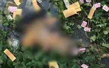 Vụ thi thể nam thanh niên phân hủy ở Hưng Yên: Nghi phạm khai được người khác thuê giết