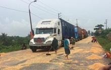 """Quảng Ninh: Người dân tranh nhau """"hôi"""" ngô rơi của tài xế container"""