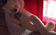 Bi hài chuyện mua hàng online: Đặt mua gấu bông khổng lồ cao 2m, nhận về gấu gầy đét, chân dài 98cm
