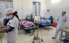Hơn 80 người ngộ độc thực phẩm ở Hà Giang: Nghi ngờ do nấm nhập từ Trung Quốc?