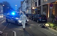 Đức: Ôtô đâm người đi bộ, tài xế bị bắn hạ