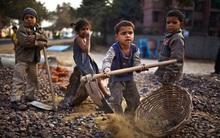ILO: Hơn 80 triệu trẻ em phải làm những công việc nguy hiểm