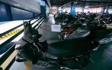 Nhà xe sân bay Tân Sơn Nhất có thể khởi kiện những chủ nhân của hàng trăm chiếc xe máy gửi suốt 2 năm không đến nhận?