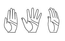 Khi mở bàn tay, các ngón của bạn duỗi ra như thế nào, điều đó sẽ nói lên tính cách của bạn