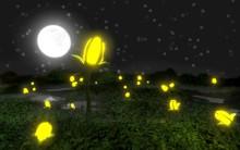 Vào mà xem, lá cây có thể phát sáng và người ta sắp trồng cây thay cho đèn đường rồi đây này