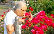 Niềm hạnh phúc giản dị cuối đời của người phụ nữ nô lệ suốt 56 năm làm việc không công