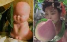 Sự thật về quả đào tiên và quả nhân sâm nghìn năm ra hoa, nghìn năm kết trái trong phim Tây Du Ký 1986