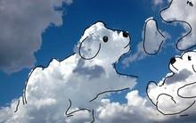Ngắm những bức ảnh vẽ mây dễ thương này ai cũng thốt lên: Hoạ sĩ bầu trời là có thật!