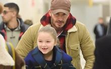 Bé Harper Beckham tươi cười lộ cả răng sún cực xinh khi xuất hiện bên bố tại sân bay