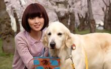 Năm Mậu Tuất và 5 câu chuyện cảm động về loài chó của điện ảnh Nhật Bản