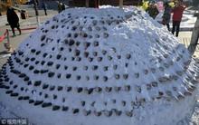 Trung Quốc: Hàng nghìn con cá được xếp tầng, vùi trong tuyết trên đường phố lớn, chào mừng tết Mậu Tuất 2018