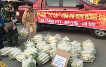 """Hà Nội: CSGT """"giải cứu"""" củ cải cho bà con nông dân Tráng Việt"""