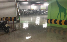 Hà Nội: Hệ thống đường ống nước gặp sự cố, hầm gửi xe chung cư lênh láng nước