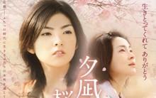 """4 bộ phim khiến bạn """"rơi vào lưới tình"""" với hoa anh đào Nhật Bản"""