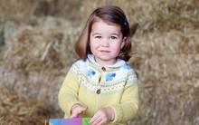 Những tiết lộ thú vị xung quanh đứa con thứ 3 sắp chào đời của công nương Kate và Hoàng tử William