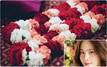 Được cho là để thể hiện tình yêu đau khổ nhưng hoa cẩm chướng còn mang ý nghĩa nào nữa?
