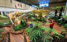 Sẽ không còn chán chường mệt mỏi dù phải ngồi chờ cả ngày tại những sân bay sang chảnh bậc nhất châu Á này