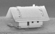 """Ngôi nhà này là minh chứng cho thấy khoa học đôi lúc có thể rất """"rảnh"""" nhưng hoàn toàn có lý do"""