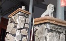Xuất hiện sư tử đá phiên bản mini được đặt uy nghi ở cửa chính hot nhất MXH