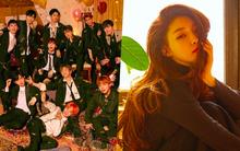 """Các thành viên Wanna One """"rủ nhau"""" debut solo, phải chăng lí do có liên quan đến Chungha?"""