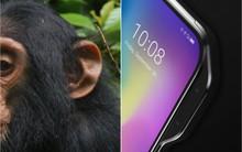 """Apple có """"tai thỏ"""", còn hãng Trung Quốc này lại thích làm smartphone """"tai khỉ"""" mới chất"""