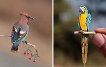 Kinh ngạc trước loạt chim bé bằng móng tay nhưng thông điệp mà chúng truyền tải mới là điều ý nghĩa