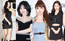Thảm đỏ Dream Concert 2019: Park Bom lên cân nhưng vẫn chiếm spotlight của Red Velvet và cả dàn nữ thần Kpop