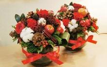 Cắm hoa sắc đỏ rực rỡ đón Giáng sinh