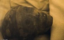 Chắc chắn 90% là chúng ta đã tìm thấy lăng mộ của nữ hoàng bí ẩn nhất Ai Cập