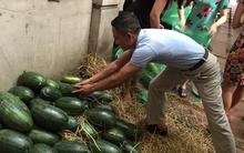 """Họ đã """"ăn"""" trên lưng nông dân 2.000 đồng/kg dưa?"""