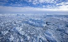 Băng ở Nam Cực vẫn gia tăng ngay trong khí hậu ấm