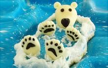 Bánh quy bạn gấu trắng Bắc Cực tập bơi
