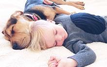 Thêm những hình ảnh siêu dễ thương của cậu bé ngủ với cún con