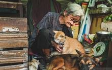 Những chú chó mèo bị bỏ rơi và hàng rau của bà cụ nghèo ở Sài Gòn