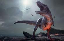 Manh mối về bộ gene của khủng long có một bước tiến rất dài: chúng ta đã biết nó trông như thế nào