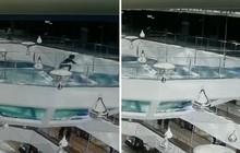 Vội đến phòng họp, người phụ nữ sẩy chân ngã xuống bể cá mập trong trung tâm thương mại