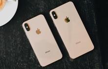 iPhone XS, XS Max và XR chính hãng bán tại VN từ ngày 2/11, giá từ 23 đến 44 triệu đồng