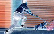 Thanh niên trộm chó bị người dân truy đuổi, đánh đập tới chết ở Hải Phòng